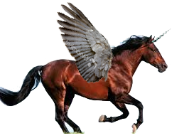 A photograph of a brown horse with wings and a horn sloppily added using Photoshop.